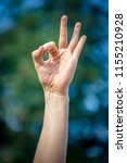 therapeutic mudras or yoga... | Shutterstock . vector #1155210928