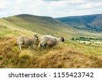 peak district national park in...   Shutterstock . vector #1155423742