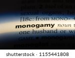 Small photo of monogamy word in a dictionary. monogamy concept.