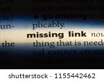 Small photo of missing link word in a dictionary. missing link concept.