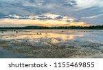 Wetland Marsh Sunset