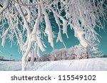 tree in snow on celestial... | Shutterstock . vector #115549102
