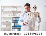 yong male doctor with skeleton...   Shutterstock . vector #1155496135