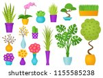 potted plant in pot. vector.... | Shutterstock .eps vector #1155585238