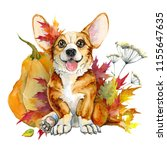 Stock photo dog breeds of corgi redhead puppy with large ears autumn leaves and pumpkin isolated on white 1155647635
