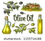 set olive. bottle and jug glass ... | Shutterstock .eps vector #1155716188