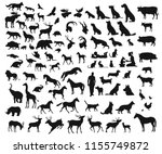 Stock vector big set of different wild and domesticated animals on white background 1155749872
