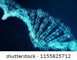 digital dna molecule  structure.... | Shutterstock . vector #1155825712