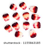 red corn seed isolated on white ...   Shutterstock . vector #1155863185