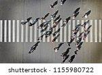 pedestrian crosswalk aerial... | Shutterstock . vector #1155980722