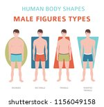 human body shapes. male figures ... | Shutterstock .eps vector #1156049158