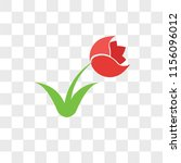 tulip vector icon isolated on... | Shutterstock .eps vector #1156096012