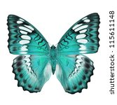 Stock photo blue butterfly isolated on white background 115611148
