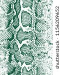 snake skin pattern texture... | Shutterstock . vector #1156209652