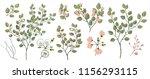 watercolor illustration.... | Shutterstock . vector #1156293115
