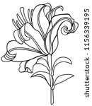 lily. lily flower. linear... | Shutterstock .eps vector #1156339195