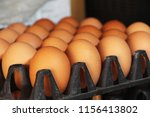 fresh eggs in a plastic tray. | Shutterstock . vector #1156413802