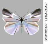 butterfly polygonal low poly...   Shutterstock .eps vector #1156505152