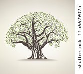 old olive tree on a light... | Shutterstock .eps vector #1156629025