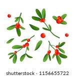 branch of mistletoe with... | Shutterstock .eps vector #1156655722