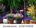 beautiful  summer garden with... | Shutterstock . vector #1156719028