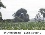 agriculture drone sprayer for... | Shutterstock . vector #1156784842