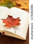 an open poetry book covered... | Shutterstock . vector #115682086