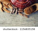 ganoderma lucidum mushroom on... | Shutterstock . vector #1156835158