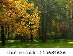 Autumn Landscape In The Park....