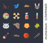 set of 16 icons such as comb ...