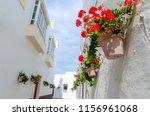 some pots of geraniums hanging...   Shutterstock . vector #1156961068