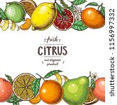 citrus  collection. hand drawn... | Shutterstock .eps vector #1156997332