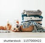 beagle dog lies on floor near...   Shutterstock . vector #1157000422