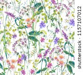 watercolor summer wildflowers... | Shutterstock . vector #1157107012