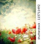 Poppy Flowers In The Sky