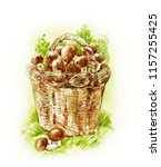 basket with mushrooms.... | Shutterstock . vector #1157255425