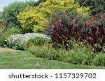 a beautiful landscape floral... | Shutterstock . vector #1157329702