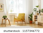 real photo of a retro armchair  ... | Shutterstock . vector #1157346772