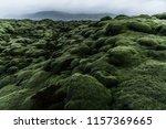 wide wild moss field in iceland ... | Shutterstock . vector #1157369665