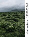 wide wild moss field in iceland ... | Shutterstock . vector #1157369668