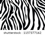 zebra stripes pattern. zebra... | Shutterstock .eps vector #1157377162