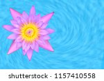 lotus or lilly water isolated... | Shutterstock . vector #1157410558
