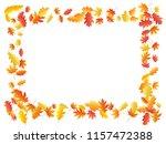 oak and maple leaf beautiful... | Shutterstock .eps vector #1157472388