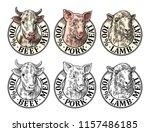 cows  pig  sheep head. 100... | Shutterstock .eps vector #1157486185