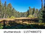 crescent meadow in autumn... | Shutterstock . vector #1157488372