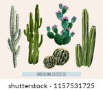 beautiful vector floral summer... | Shutterstock .eps vector #1157531725
