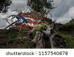 Painted Puerto Rico State Flag...