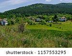 springtime green forest  glade  ... | Shutterstock . vector #1157553295