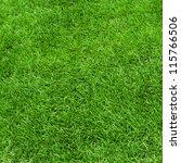 green grass surface | Shutterstock . vector #115766506