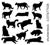 Stock vector set of vector silhouettes of different cats isolated on white background 1157677528